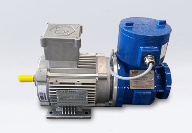 Motor complete with brake (applicable only for RL series)