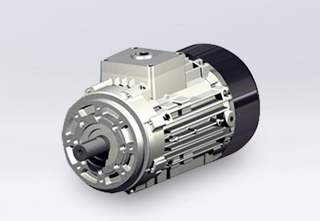 Motor without terminal box (applicable only for RL series)