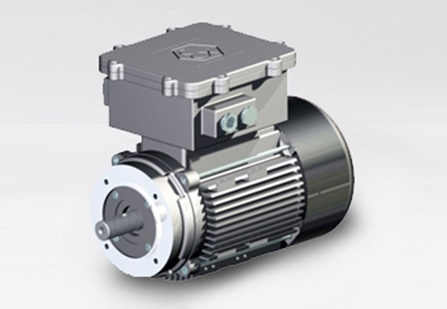 High starting torque single phase motors with the possibility of adding ATEX control box start & stop)